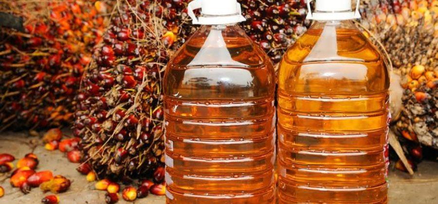 Где содержится пальмовое масло, в какие продукты добавляют